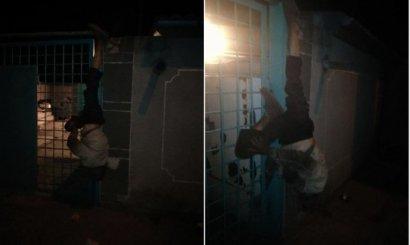 В Одессе похититель просроченного пива повис на заборе вниз головой