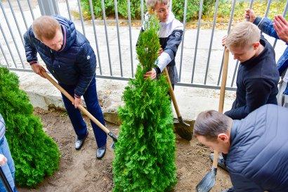 Студенты Одесской Юракадемии высадили хвойную аллею возле спортивного комплекса вуза