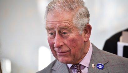 У принца Чарльза объявился «внебрачный» сын