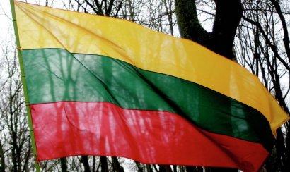 Правительство Литвы проголосовало за безвозмездное предоставление Украине боеприпасов