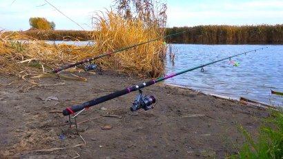 Рыбалка: права и обязанности рыбака