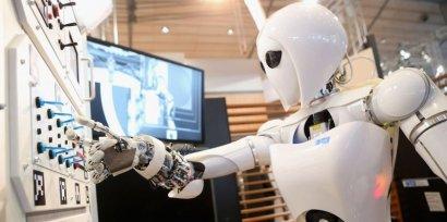 Украинским заробитчанам угрожают польские роботы