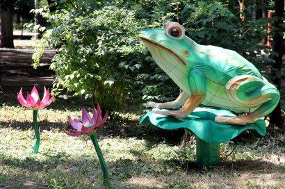 40-метровый дракон и сад фламинго.