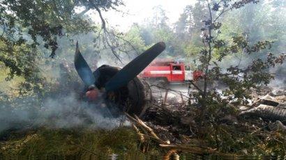 Самолет Ан-2 упал на Полтавщине
