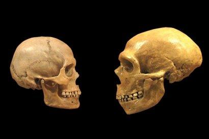Найдены древнейшие останки Homo sapiens за пределами Африки