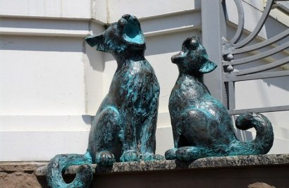 Возле одесской Музкомедии поселились поющие коты
