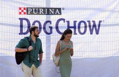 Спортивный чемпионат для собак Dog Puller.