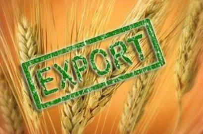 Украина экспортировала уже более пяти млн тонн зерна