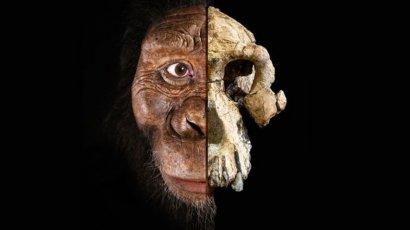 Скелету из песни Люси придется уступить - найден череп первого человека на Земле