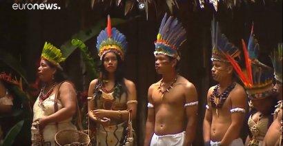 Леса Амазонии будут спасать семь стран Южной Америики ВИДЕО