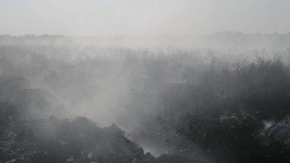 Киевляне массово жалуются на запах гари