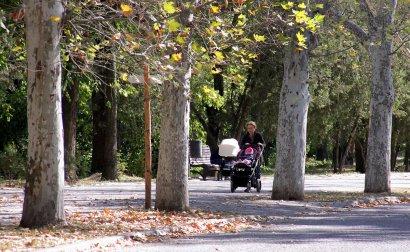 Осень пришла в Одессу.