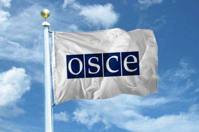 Миссия ОБСЕ обнародовала отчет по Донбассу