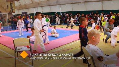 Открытый Кубок по каратэ: спорткомплекс МГУ принял более 500 спортсменов