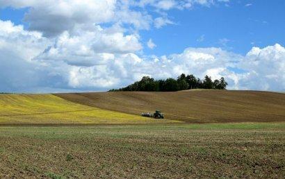 Аграрный комитет Рады принял решение по закону о рынке земли