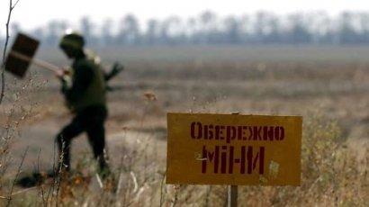 Разведение сил в Петровском завершено
