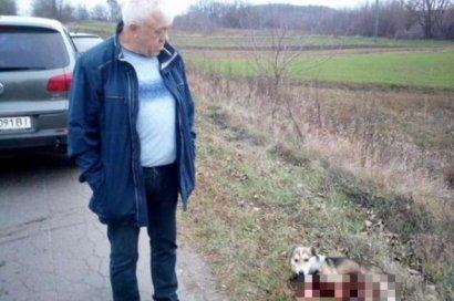 Чиновник из Хмельницкого привязал собаку к машине и протащил 1,5 километра
