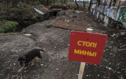 На Донбассе из-за подрыва на минах погибли более тысячи людей, - ООН
