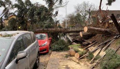 Ураган в Чехии: поваленные деревья, поврежденные авто и 15 000 домов без света