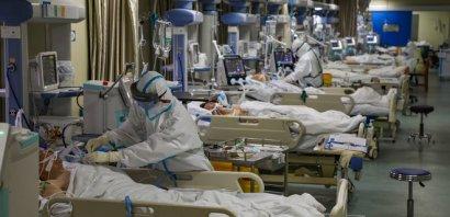 Коронавирус может заразить до 60% населения Земли