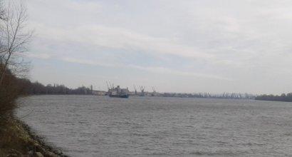 Портовики Рени приостановили забастовку: решение – за Максимом Куцым