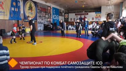 В Одессе прошёл открытый чемпионат области по комбат самозащите ICO