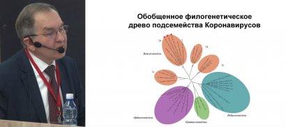 Познавательная лекция о коронавирусе от вирусолога мирового уровня